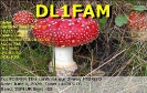 DL1FAM