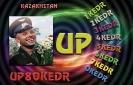 UP1KEDR